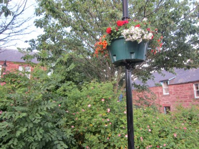 Turriff Town Pride lamp post baskets near Turriff library.